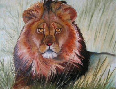 Le regard du lion boutique for Les lions du meuble